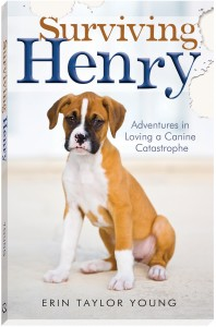Surviving Henry Book Cover