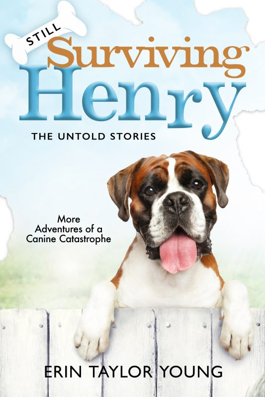 Still Surviving Henry: The Untold Stories LARGE PRINT